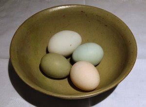 Olive, blue and white eggs in Longquan celadon bowl